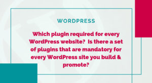 Which plugin required for every WordPress website?